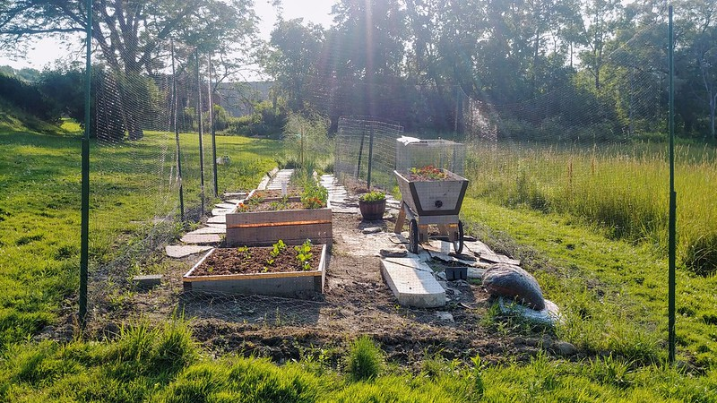 Before: The Vegetable Garden Last Year