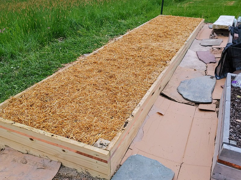 L15: Mulch (here, straw) to prevent weeds)