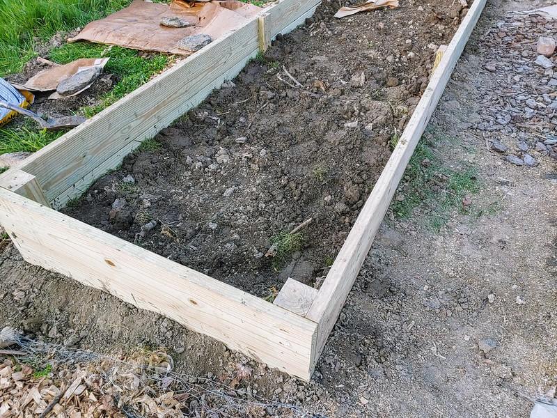 L6: native soil