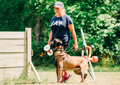 2020-07-05, Jagger Training-3