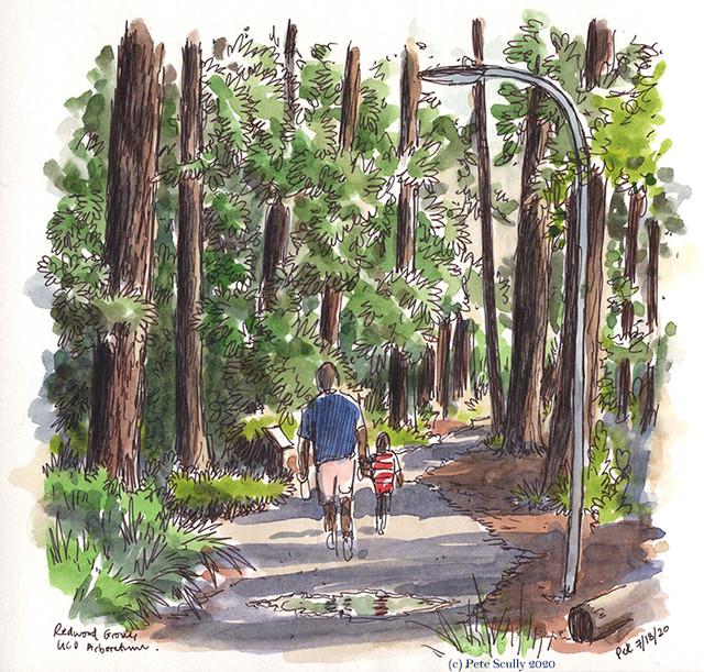 LDD 071820 Arboretum