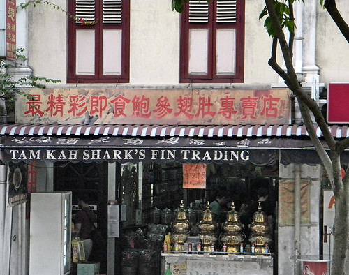 The Shark Fin Trading Company storefront on a street in Singapore