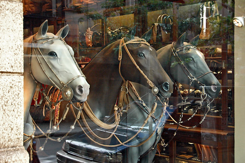 A shop window displaying jewelry you can buy for your horses in Buenos Aires, Argentina