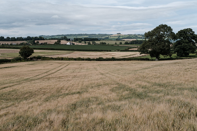 View of Wheatsheaf Inn from Stantonbury Hill
