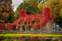Autumn Tea House Llanrwst Wales