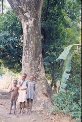 Children by tree Letan Haiti May 1988