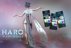 HARO Wasp Wings
