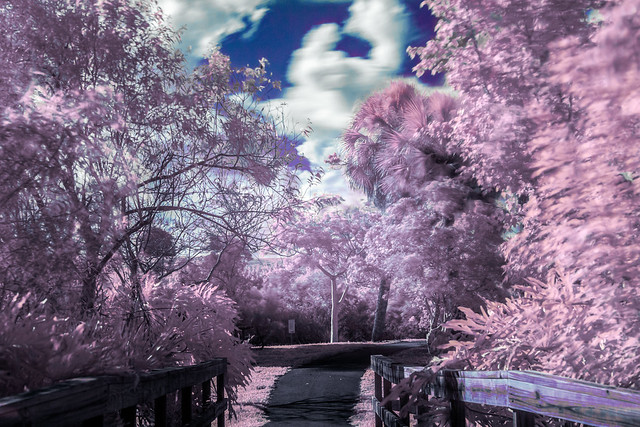 Infrared Vista View 2020_07_19