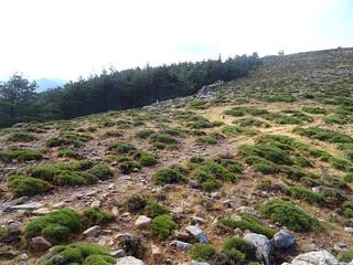 Descente depuis le sommet du Monte Calva (1381m)