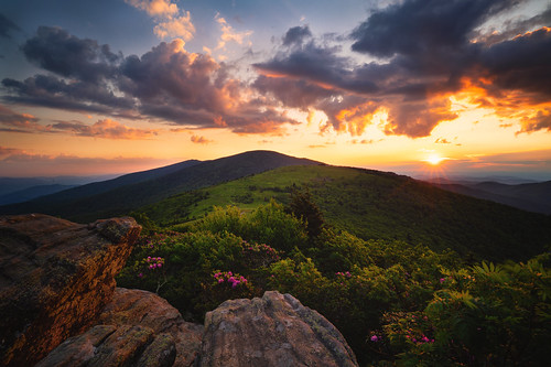 2020 sonyilce7rm2a7rii zeissbatis18mmf28 reallyrightstuff ba72l bh55 rrspcl01 clouds goldenhour landscapephotography mountains nikcollectionbydxo sunset thegoldenhour copyright2020 travisrhoadsphotography northcarolina tennessee roanmountain appalachiantrail janebald roanhighlands roundbald catawba rhododendron rhododenron