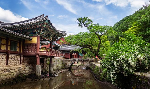 Songgwangsa temple (송광사)