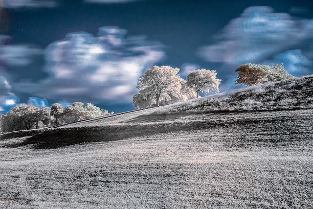 Infrared Vista View 2020_07_19