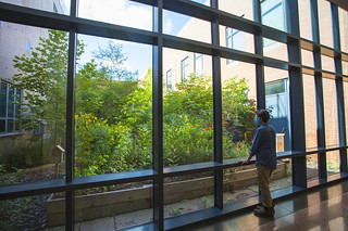 The college's pollinator is frequented by students. It is situated in the Science Center Atrium.