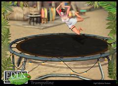 EDEN-trampoline
