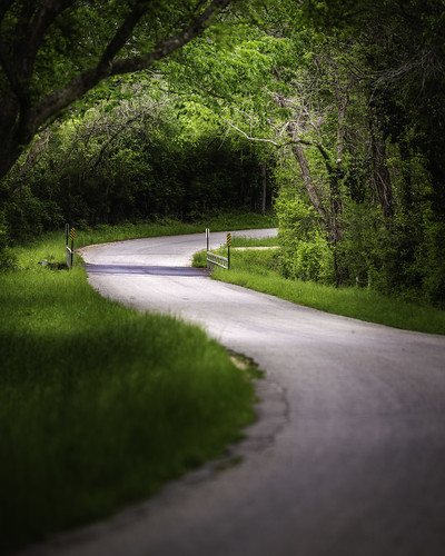texas usa washingtoncounty chappellhill countryside curve curving green highway image landscape photo photograph road roadscape trees winding f28 mabrycampbell march 2020 march262020 20200326campbellh6a6062pano 200mm ¹⁄₂₅₀sec iso100 ef200mmf28liiusm fav10 fav20