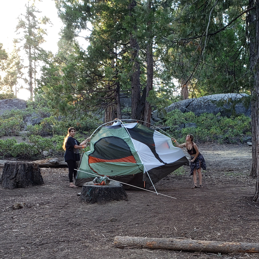 kids-pitch-their-own-tent-Dinky-Creek-June-2020