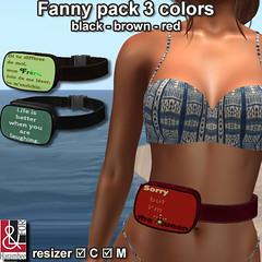 Fanny pack 3 colors