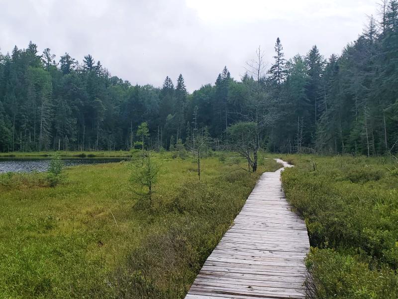 Lake Mizzy Algonquin Park