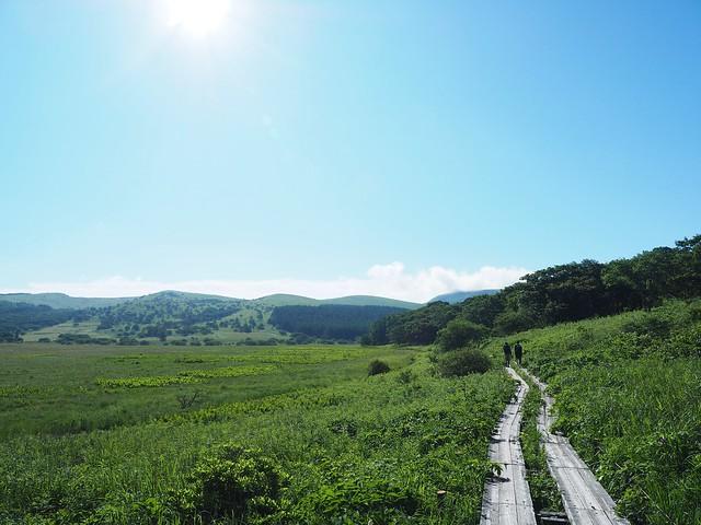 霧ヶ峰 200719 (3)