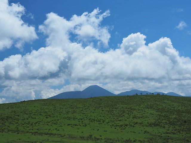 霧ヶ峰 200719 (36)