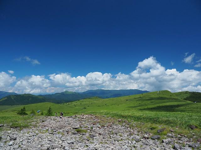 霧ヶ峰 200719 (38)