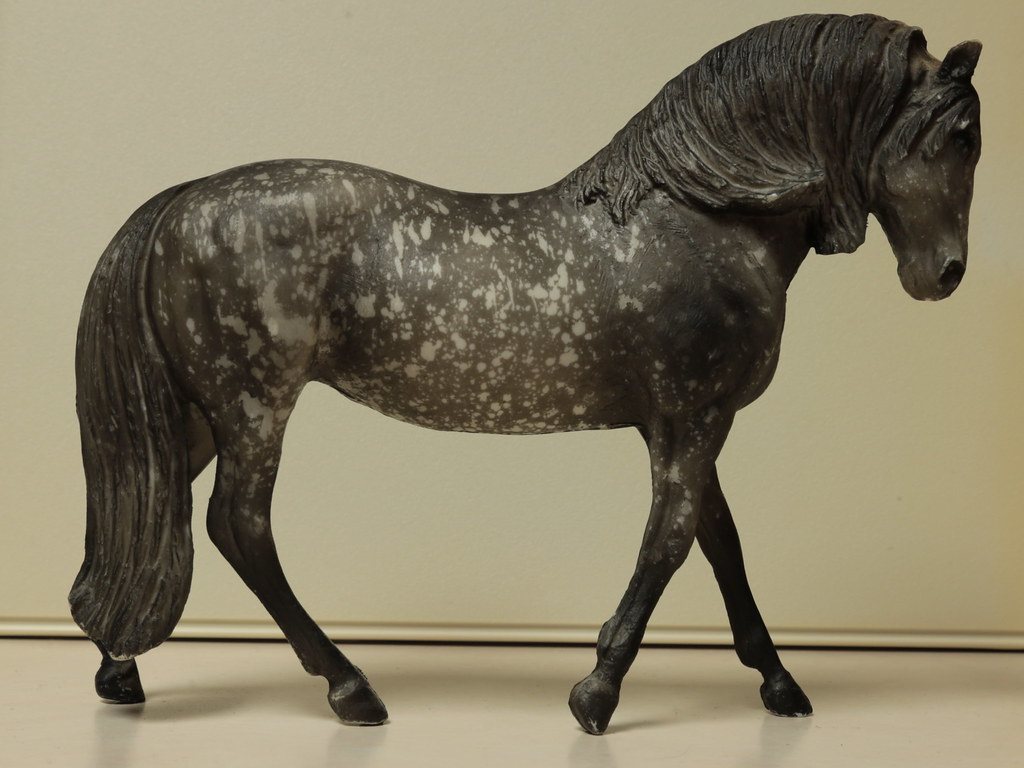 5M2A3038c Andalusian Mare Right