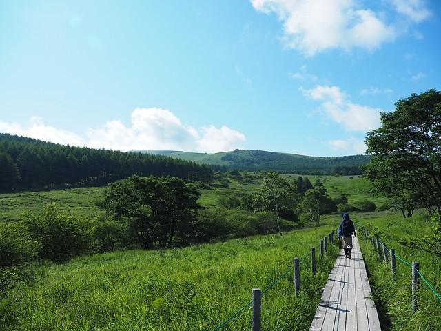 霧ヶ峰 200719 (8)