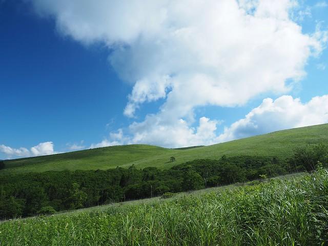 霧ヶ峰 200719 (12)