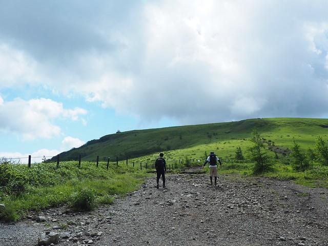 霧ヶ峰 200719 (21)