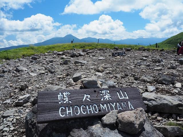 霧ヶ峰 200719 (37)