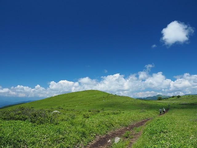 霧ヶ峰 200719 (44)