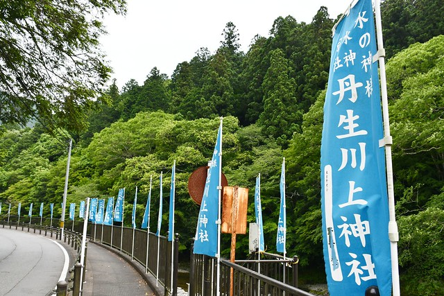 niukawakamijinjanakasha_002