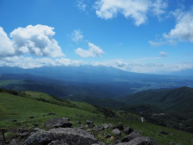 霧ヶ峰 200719 (26)