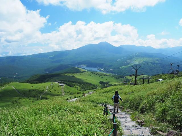 霧ヶ峰 200719 (29)