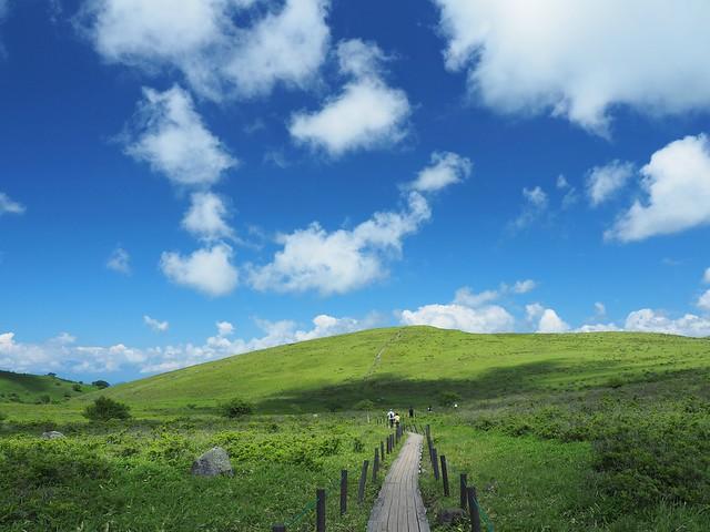 霧ヶ峰 200719 (32)