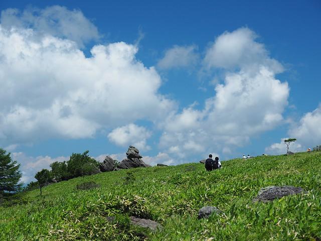 霧ヶ峰 200719 (45)