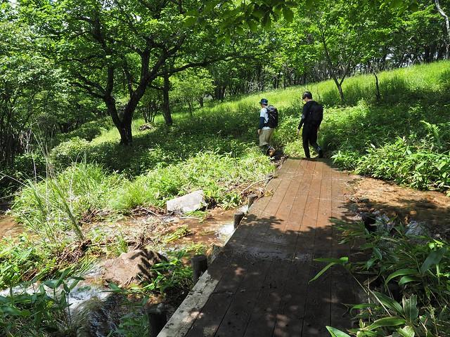 霧ヶ峰 200719 (51)