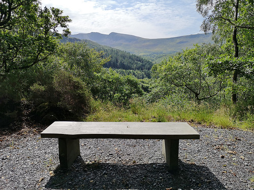 Bench with view