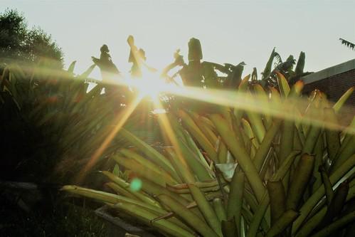 world trip travel asia flickr tour philippines explore rizal luzon baras sun sunrise