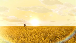 When we walked in fields of gold