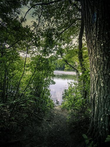 blydenburghpark lake longisland ny newyork places stumppond summer hiking outdoors