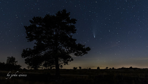 Comet Neowise over Holt heath
