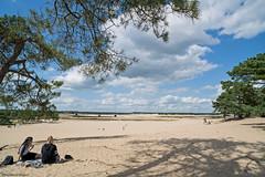 Sanddunes Brabant