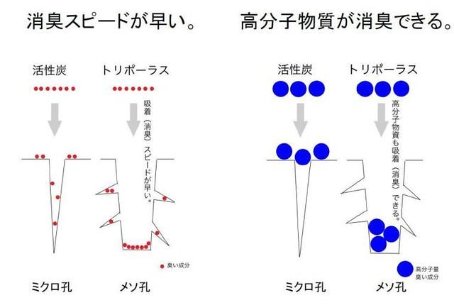 large_大小3種類の微細孔で様々なサイズの物質を吸着できる