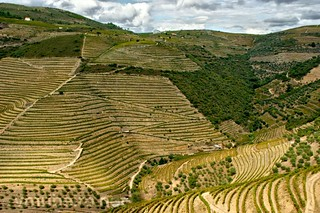 Douro valley | by vmribeiro.net