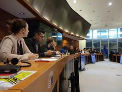 Plenária em Bruxelas,  05 Dez. 2019
