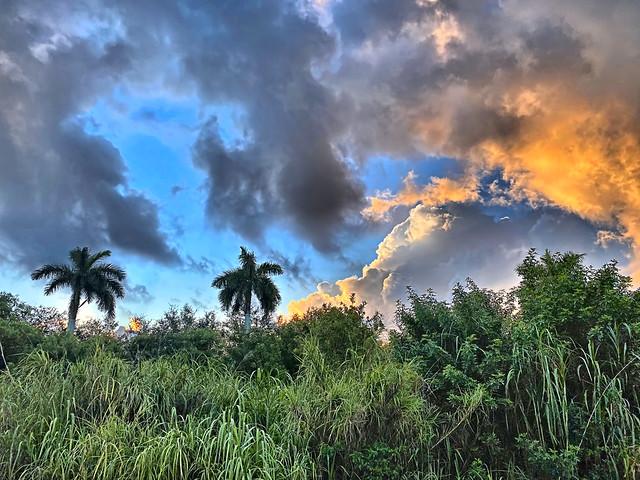Clouds after sunrise 01-20200720
