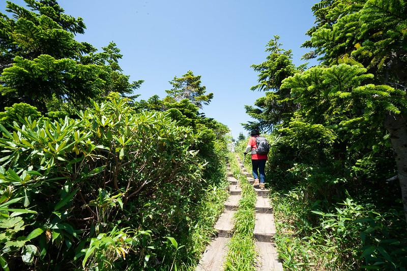 会津駒ヶ岳の山頂直前