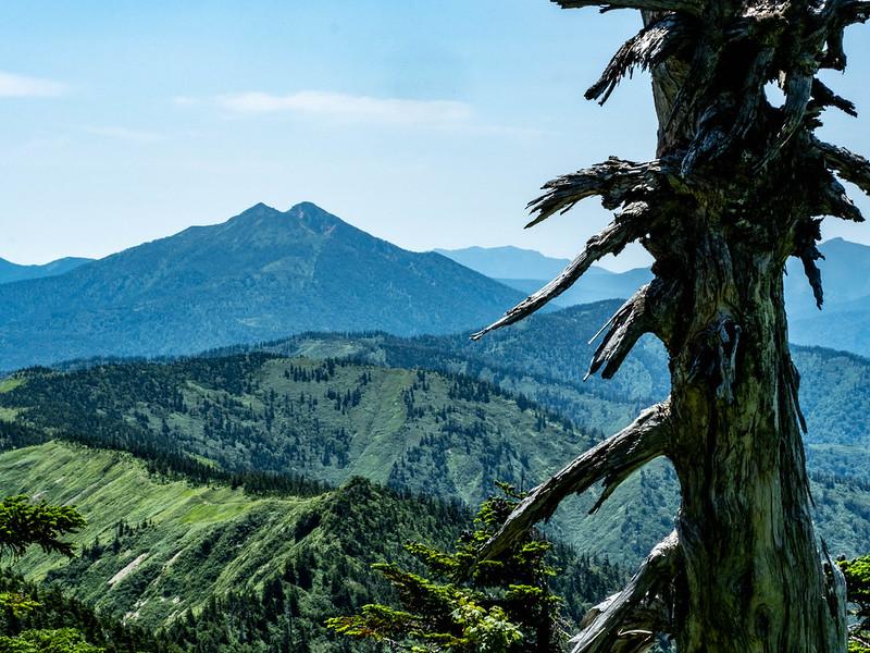 会津駒ヶ岳から見える燧ヶ岳