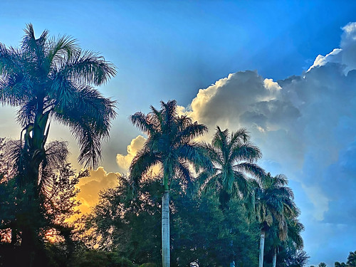 Clouds after sunrise 02-20200720